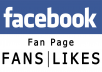 give you 1000 Real Likes facebook fanpage