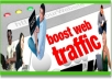provide 50,000 TRAFFIC Visitors To Website With Proof