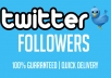 provide 1000 Twitter Followers
