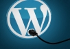 install Wordpress for you with the required plugins and theme in 24 hours