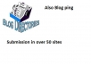 submit your blog in several directories and ping them