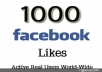 give 1000 Real and Non Drop Facebook Fan Page Likes