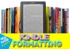do fast high quality professional kindle formatting 	 do fast high quality professional kindle formatting