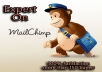 work as Mailchimp Expert