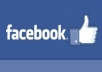 give you 500 permanent Facebook Fanpage likes