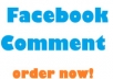 Get You 30+ Custom Facebook Comments to your Photo,Post,Video,Status only for