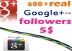 give 600+ USA base Google Plus Circle Followers for