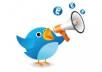 promote Tweet or Website to my 50,0000 Active Twitter Followers with proof within 24hrs