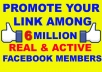 promote Your Link to 6 Million Facebook Groups real members