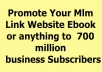 promote your Mlm Link Website Ebook OR anything to 700 million business seeker
