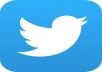 teach you how to get 1,000 twitter followers in few weeks