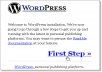 install wordpress with a theme