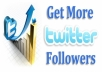 Get You 4,000+ Twitter Follower **Fast Delivery**