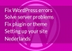 fix your WordPress problem or issue
