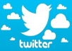 Add High Quality 250+ Targeted Twitter Followers