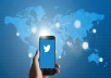 teach you how to tweet your way to Network Marketing success