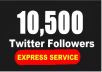 provide 10500 Permanent No Drop Twitter Followers