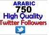 give you 750 high quality arabic twitter followers