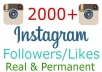 add 2000 instagram followers and likes
