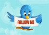 Instantly Add 1000+ Twitter followers to your profile