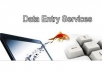 do all kind of data entry job within a short time for