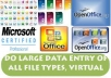 do all kind of data entry jobs and i will create or do MS office documents in a short period of time