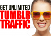 give TUMBLR traffic to your website for 10 days