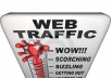 send10 000 TRAFFIC to your web blog site with report