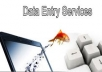 do any type of data entry with 100% accuracy
