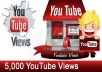 give you 5000+ youtube views only