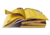 list business details from any yellow pages