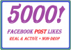 sent 5000 Facebook Fan Page Post Likes