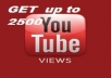 Give You 2599+ HR NON Drop + Splitable Youtube Views