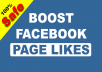 Give you 150+ Facebook Likes for your Facebook Page.