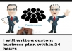 Custom business plan in 24 hours