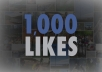 give you 500 like for facebook fan page real