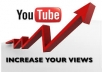 Give You Super Fast HQ 3000+ Bonus High retention YouTube Views