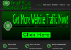 set up a Traffic Reseller Website for you and provide 6 months of hosting