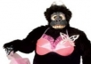 dance in my gorilla costume for 2 minutes to any song