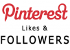 provide 500 pinterest followers or likes