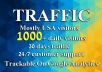 Drive 1000 daily targeted website traffic for 30 days