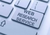 provide you Professional 100 web research
