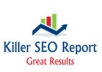 create a killer SEO report and analysis of your website within 24hrs