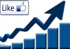 give you 2000 real facebook likes
