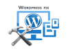 provide Theme,Install,Customize,Fix Errors Of Wordpress