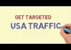 teach you 300,000 USA targeted visitors to your site