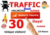 give  you 500,000 USA targeted visitors to your website products