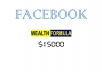 teach you how to make 15000 dollars daily on facebook