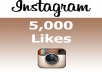 add 5000 Instagram Likes HQ and FAST