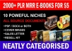 give 2000 ReBrandable Ebooks And Articles With mrr plr